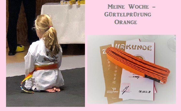 Gürtelprüfung orange