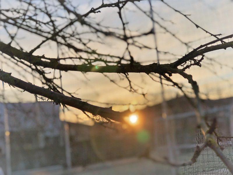 Sonnenstunden